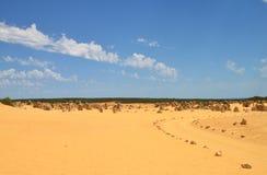 Pinnacles Landscape royalty free stock photo