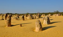 Pinnacles: Limestone Landscape in Western Australia royalty free stock image