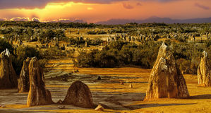 The Pinnacles in the Nambung National Park,. Western Australia. The Pinnacles are limestone formations contained within Nambung National Park, near the town of Royalty Free Stock Photo