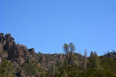 Pinnacles national park high Peaks Royalty Free Stock Images