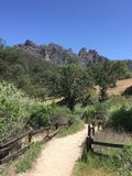 Pinnacles national park hiking area with moss covered trees and fence high peaks trail Stock Images