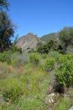 Pinnacles national park machete Ridge Stock Photos