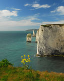 The Pinnacles Swanage Dorset Royalty Free Stock Photos