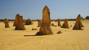 The Pinnacles in west australia Royalty Free Stock Photography