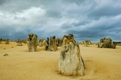 Pinnacles, West Australia, Pinnacle Nambung Park Stock Images