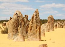 Pinnacles Western Australia. Ancient rock formations called the Pinnacles located in Western Australia. Also a tourist attraction Royalty Free Stock Photography