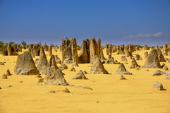 The Pinnacles. In Western Australia Royalty Free Stock Image