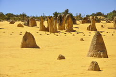 The Pinnacles. In Western Australia Stock Image