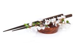 Pinnar och sakura filial över soyabunken Royaltyfria Bilder