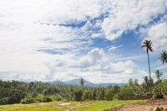 Pinnawala, Sri Lanka Lizenzfreies Stockfoto