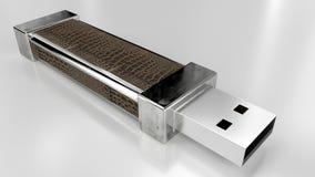 Pinne för läder USB för pråligt minne Usb Fotografering för Bildbyråer