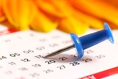 Pinned date. Beautiful shot of pinned date on calender royalty free stock photography