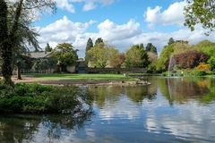 Pinner Memorial Park, UK. Photo shows lake with fountain, birds, ducks, geese, trees and green foliage. Pinner Memorial Park, Pinner, Middlesex, UK. Panoramic royalty free stock photos