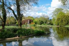Pinner Memorial Park, UK. Photo shows lake with fountain, birds, ducks, geese, trees and green foliage. Pinner Memorial Park, Pinner, Middlesex, UK. Panoramic royalty free stock photography