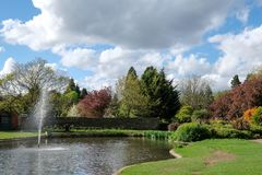 Pinner Memorial Park, UK. Photo shows lake with water fountain, birds, ducks, geese, trees and green foliage. Pinner Memorial Park, Pinner, Middlesex, UK Royalty Free Stock Photos