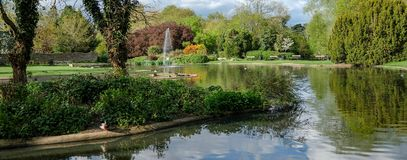 Pinner Memorial Park, UK. Photo shows lake with water fountain, birds, ducks, geese, trees and green foliage. Pinner Memorial Park, Pinner, Middlesex, UK Royalty Free Stock Images