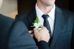 Pinning boutonniere on groom Stock Images