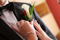 Pinning a boutonniere Stock Photos