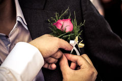 Pinning a boutonniere. Pinning the Groom with boutonniere flowers before wedding ceremony Royalty Free Stock Image