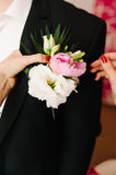 Pinning a Boutonniere Royalty Free Stock Photo