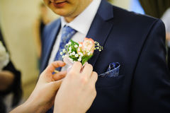 Pinning a Boutonniere. For groom on wedding day Stock Image