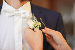 Pinning a Boutonniere. For groom on wedding day Stock Photo