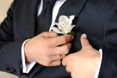 Pinning Orchid Boutonniere Royalty Free Stock Photo