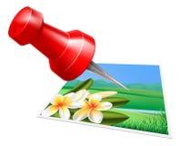Pinning photo icon stock illustration