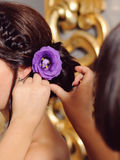 Pinning Violet Flower Stock Photos