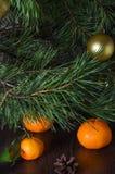 Pino adornado por la Navidad y el Año Nuevo con las mandarinas Foto de archivo