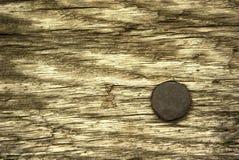 Pino de aço oxidado Imagem de Stock Royalty Free