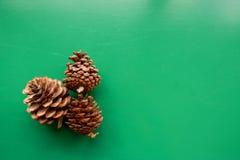Pino de la fruta - cono del pino fotos de archivo