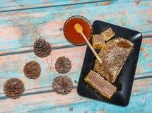 Pino de la miel de Marmaris Imágenes de archivo libres de regalías