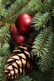Pino de las decoraciones de la Navidad, bolas en un árbol. Foto de archivo libre de regalías