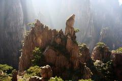 Pino de montaña de Huangshan fotos de archivo libres de regalías