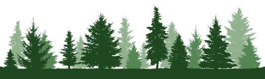Pino degli alberi, abete, abete rosso, albero di Natale Isolato illustrazione di stock