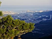 Pino e la vista alla città di Sokcho Fotografia Stock