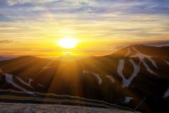 Pino en una cuesta de montaña Rutas del esquí Fotos de archivo