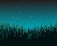Pino Forest Environment With Snow en la noche Imagen de archivo