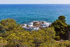 Pino hermoso sobre el mar Mediterráneo Fotos de archivo