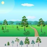 Pino pronto degli alberi Fotografia Stock Libera da Diritti