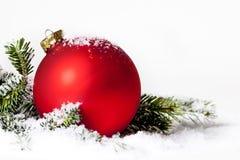 Pino rosso della neve dell'ornamento di Natale fotografia stock libera da diritti