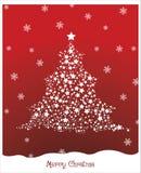 Pino stellato di Natale Immagini Stock