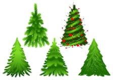 Pino verde stabilito dell'abete di Natale illustrazione vettoriale