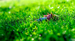 Pinocho relax. Sleeping time of Pinocchio on a green grass Royalty Free Stock Photos