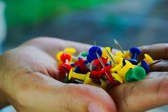 Pinos coloridos aguçado Foto de Stock Royalty Free
