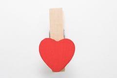 pinos dados forma coração Imagens de Stock