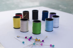 Pinos e linha do arco-íris Foto de Stock