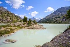 Pinos en la orilla de un lago glacial de la montaña Foto de archivo