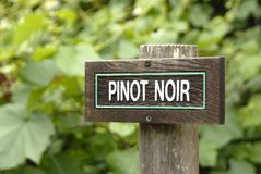 Pinot noir sign Royalty Free Stock Image